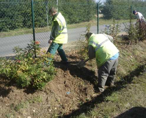 EA Les Fleurons Bernay - Entretien des espaces verts (Entretien parcs et jardins)